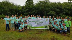Arbor Day: Tree Planting  Activity 2018