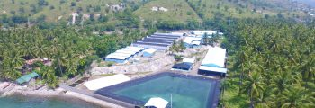 2014 : Investment and Start of Operation of Gensan Shrimp Laboratory Hatchery