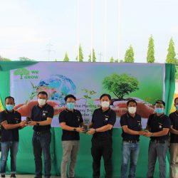 Mahogany Planting